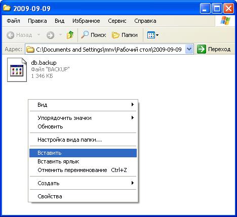 Вставка файлов Iris CRM